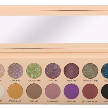pinch me 14 piece eyeshadow palette